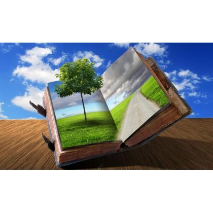 Βιβλίο - Δέντρο